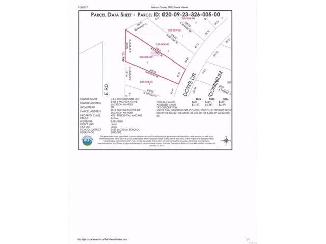 3014 Twin Meadows, Leoni, MI 49201 (#543245938) :: The Buckley Jolley Real Estate Team