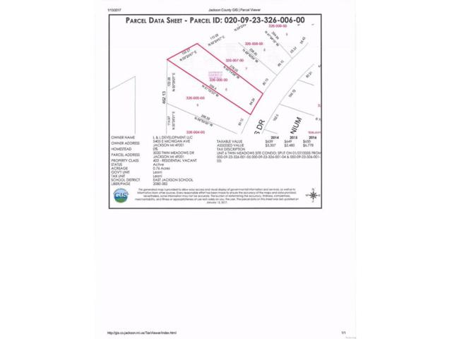 3020 Twin Meadows, Leoni, MI 49201 (#543245939) :: The Buckley Jolley Real Estate Team