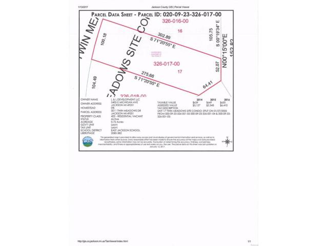 3011 Twin Meadows, Leoni, MI 49201 (#543245950) :: The Buckley Jolley Real Estate Team