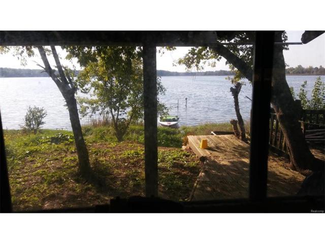5616 Joslin Lake Drive, Lyndon, MI 48137 (#543250982) :: The Buckley Jolley Real Estate Team