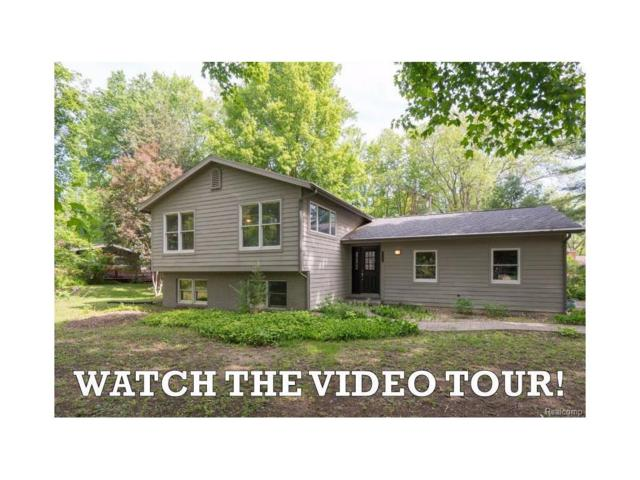 3820 W Loch Alpine Drive, Scio Twp, MI 48103 (MLS #543252351) :: The Toth Team