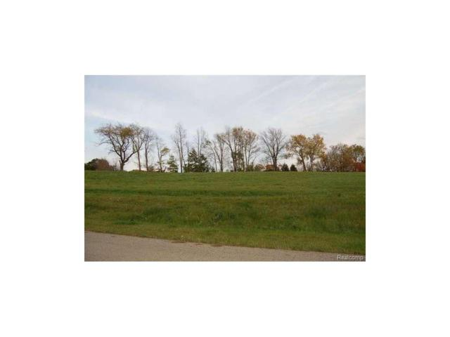 Campbell Lake Dr, Parma, MI 49269 (MLS #55201603710) :: The Toth Team