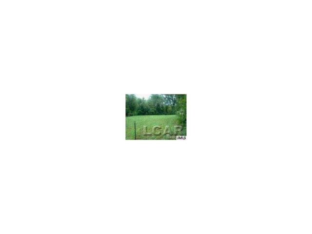2000 Hickory Street, MADISON TWP, MI 49221 (MLS #56031244229) :: The Toth Team
