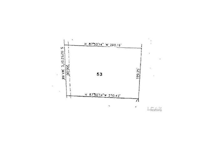 Samantha Drive, Britton, MI 49229 (#56031293163) :: Duneske Real Estate Advisors