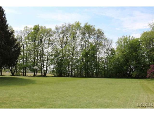 3000 Hartley Dr Blk, MADISON TWP, MI 49221 (#56031319431) :: RE/MAX Vision