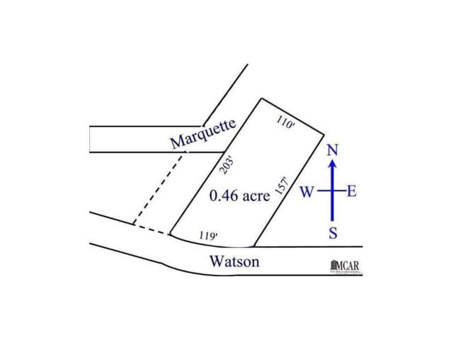 Watson Blvd, Erie, MI 48133 (#57003448410) :: Duneske Real Estate Advisors
