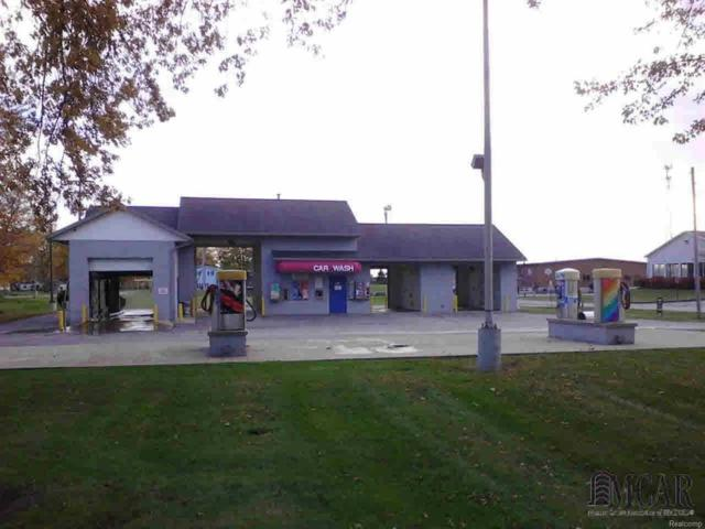 10550 Evans Dr, Luna Pier, MI 48157 (#57003451258) :: Duneske Real Estate Advisors