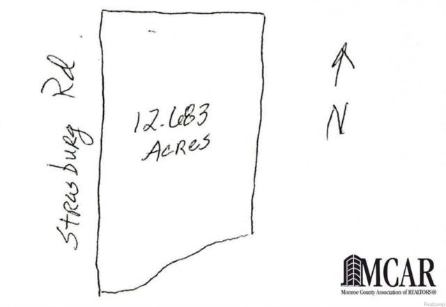 13850 Strasburg, Lasalle, MI 48145 (#57003451353) :: Simon Thomas Homes
