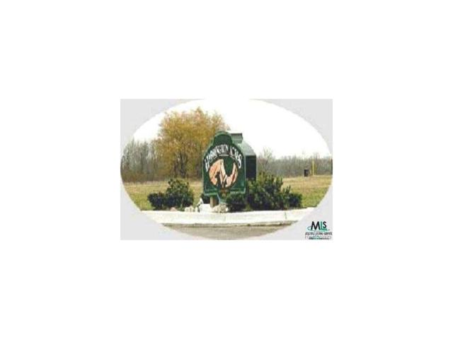 0 Willy Street Lot 9, Croswell, MI 48422 (MLS #58000907865) :: The Toth Team