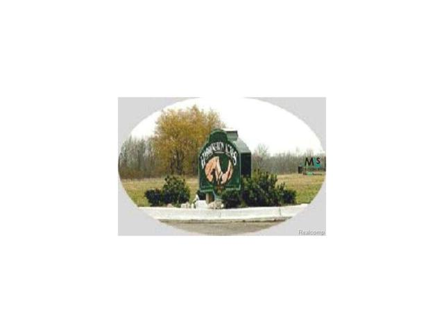 0 Jay Street Lot 18, Croswell, MI 48422 (MLS #58000908094) :: The Toth Team