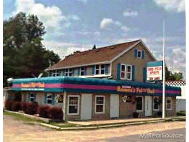 7264 Lakeshore Rd., Lexington, MI 48450 (#58031189881) :: RE/MAX Nexus