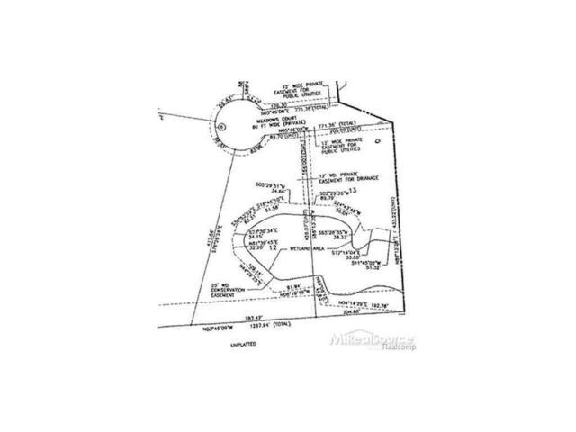 2421 Meadows Court, Addison Twp, MI 48367 (MLS #58031284136) :: The Toth Team