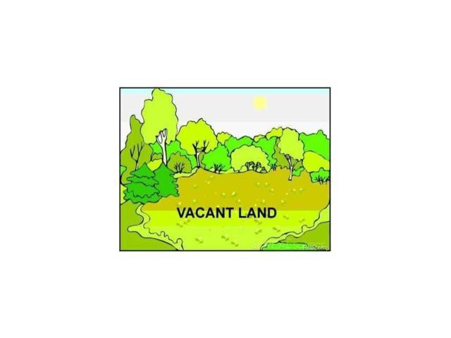 1747 Meadowlands Court, Metamora Twp, MI 48371 (#58031294124) :: RE/MAX Nexus