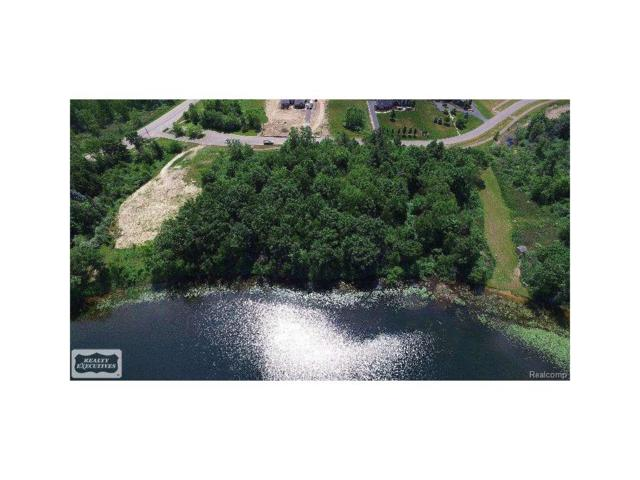 5757 Cusick Lake Drive, Washington Twp, MI 48095 (#58031294730) :: Simon Thomas Homes