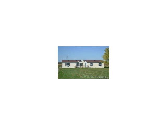 3601 Marquette, Deckerville, MI 48427 (MLS #58031309558) :: The Toth Team