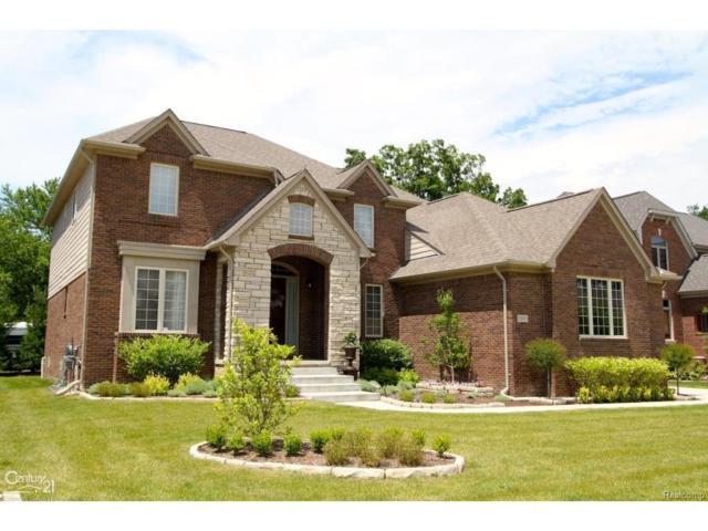 55071 Timbers Edge Drive, Shelby Twp, MI 48316 (#58031323481) :: Simon Thomas Homes