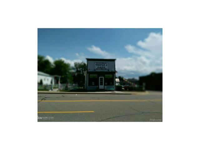 4020 E Chandler, Carsonville, MI 48419 (MLS #58031324738) :: The Toth Team