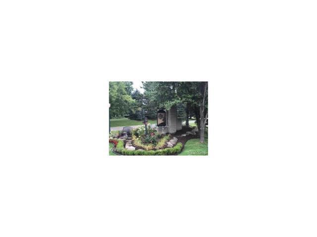 128 Fern, Addison Twp, MI 48367 (#58031326158) :: Duneske Real Estate Advisors