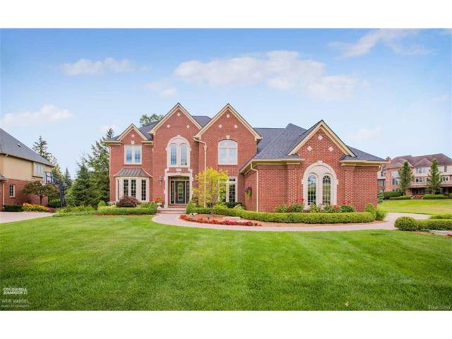 54498 Carrington, Shelby Twp, MI 48316 (MLS #58031326883) :: The Toth Team