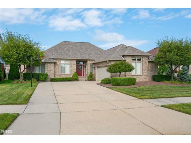 50237 Steeh Dr., Macomb Twp, MI 48044 (#58031328821) :: RE/MAX Vision