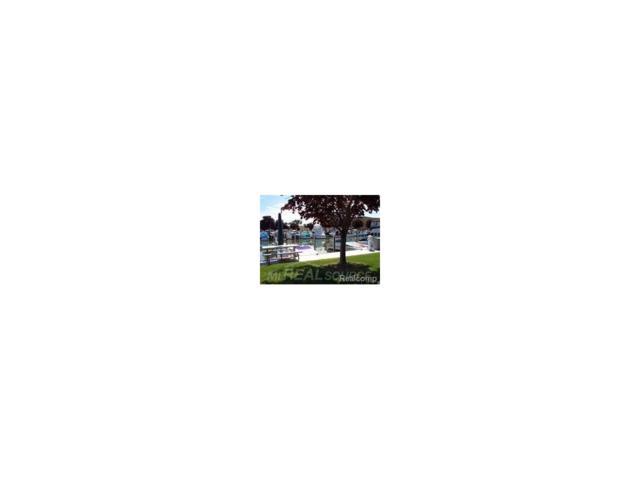 9 Lexington Wharf, Harrison Twp, MI 48045 (MLS #58031331929) :: The Toth Team