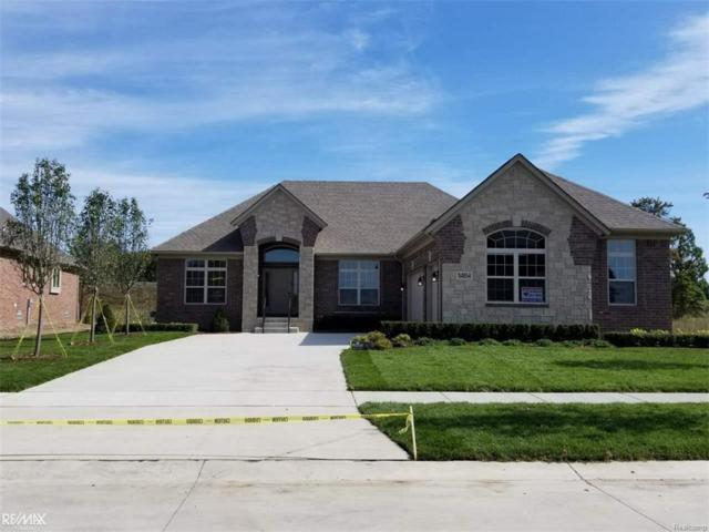 54854 Deadwood Street, Shelby Twp, MI 48316 (#58031333324) :: Simon Thomas Homes