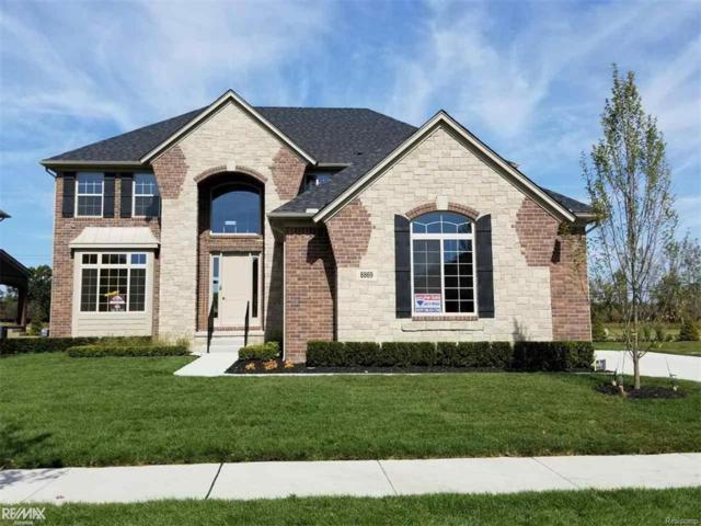 8869 Softail Street, Shelby Twp, MI 48316 (#58031333325) :: Simon Thomas Homes