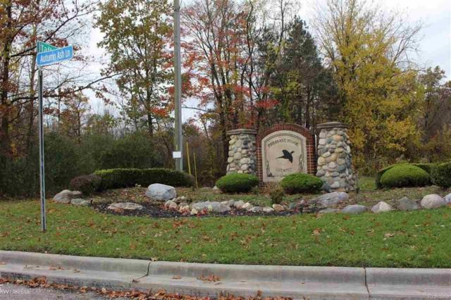 6027 White Birch Ln, Bruce Twp, MI 48065 (MLS #58031334816) :: The Toth Team