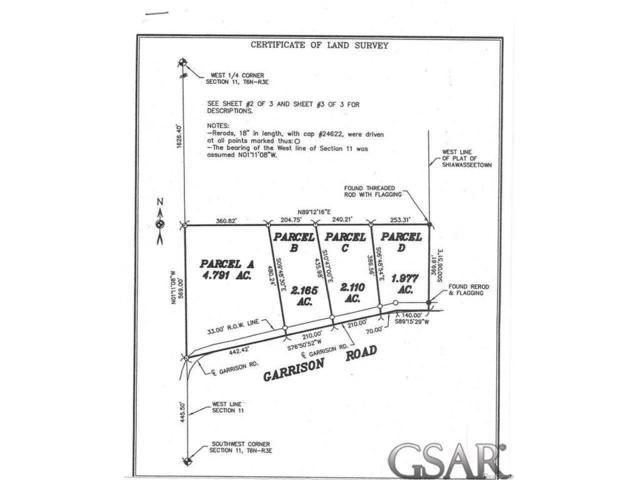 Garrison Rd., Shiawassee Twp, MI 48429 (#60031312721) :: Metro Detroit Realty Team | eXp Realty LLC