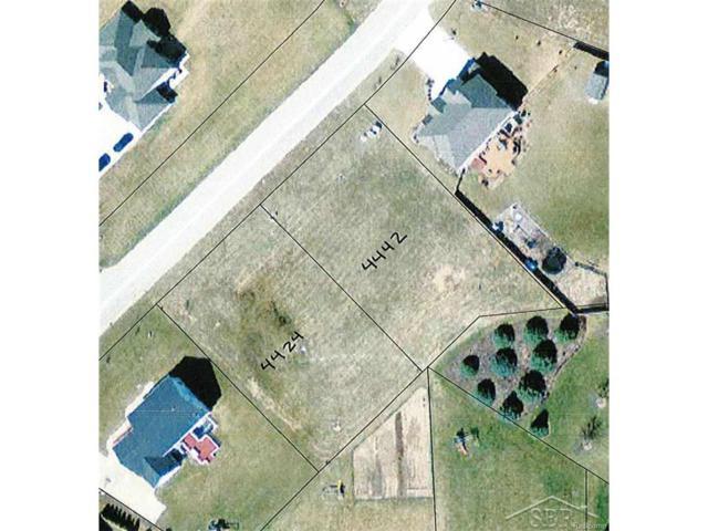 4442 W Island, Saginaw Twp, MI 48603 (#61031327225) :: Metro Detroit Realty Team | eXp Realty LLC