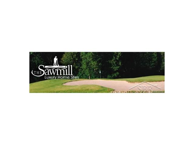Sawmill Creek Trail, Saginaw Twp, MI 48603 (#61031332070) :: RE/MAX Nexus