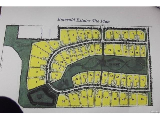 LOT 35 Emerald Valley Loop, Handy Twp, MI 48836 (#214033419) :: The Buckley Jolley Real Estate Team