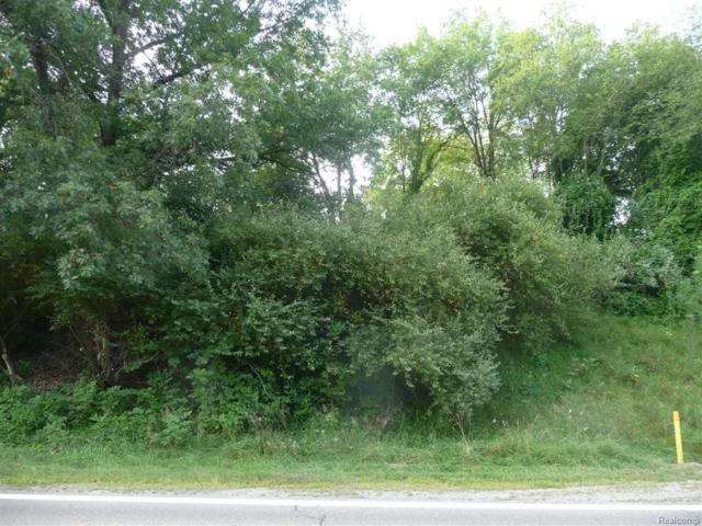 00 Burgess Road, Riley Twp, MI 48041 (#214055899) :: RE/MAX Classic