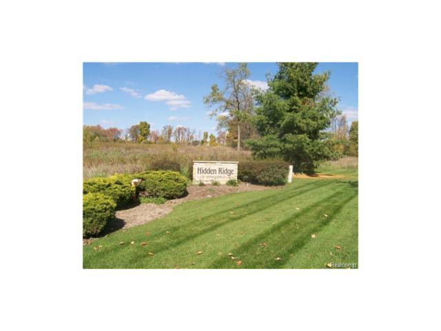 5032 Birch Drive, Springfield Twp, MI 48350 (#215065121) :: RE/MAX Classic
