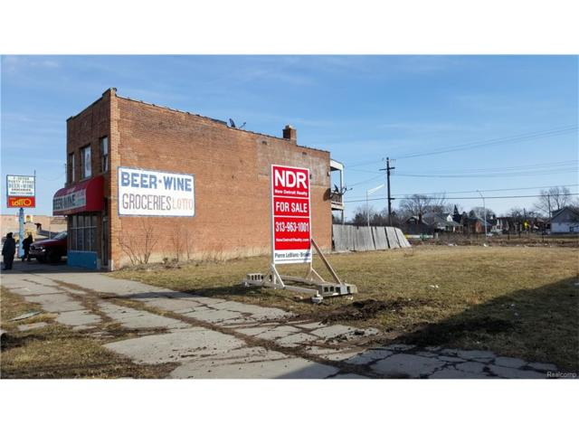 15132 Harper Avenue, Detroit, MI 48224 (MLS #216018362) :: The Toth Team