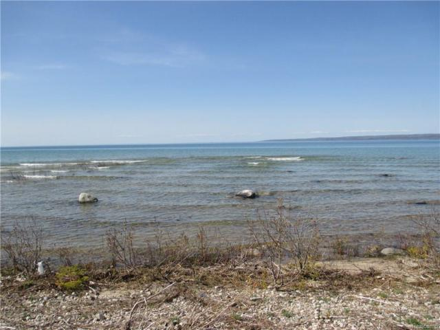 LOT 28 Nine Mile Point Drive, HAYES TWP, MI 49720 (#216046638) :: The Buckley Jolley Real Estate Team
