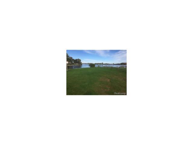 1040 York, Village of lake Isabella, MI 48893 (#216093040) :: RE/MAX Classic