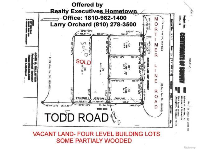 Parcel D Todd Lot D Road, Fremont Twp, MI 48422 (MLS #217065954) :: The Toth Team