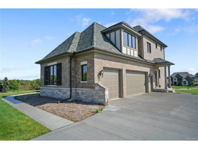 3523 Strathcona, Rochester Hills, MI 48309 (#217086776) :: The Buckley Jolley Real Estate Team