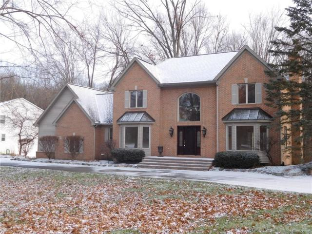 10633 E Splitstone Drive, Hamburg Twp, MI 48169 (#217107980) :: The Buckley Jolley Real Estate Team