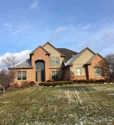 54864 Grenelefe Circle E, Lyon Twp, MI 48178 (#217108033) :: The Buckley Jolley Real Estate Team