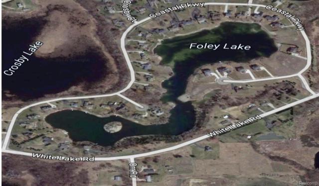 0000 White Lake Road, White Lake Twp, MI 48386 (#216050522) :: RE/MAX Classic
