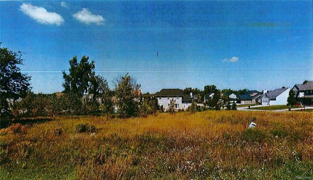 4448 Kristina, Grand Blanc Twp, MI 48439 (#217012869) :: The Buckley Jolley Real Estate Team