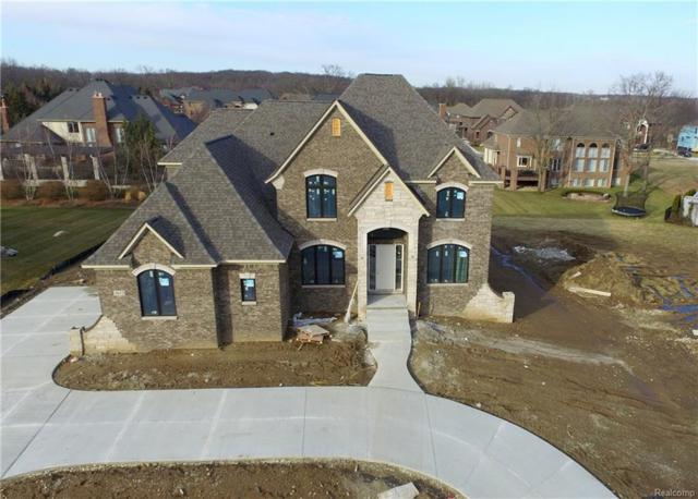3612 Strathcona Drive, Rochester Hills, MI 48309 (#217036234) :: The Buckley Jolley Real Estate Team