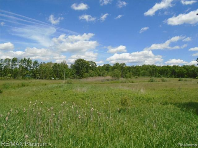 PARCEL D Hacker Road, Hartland Twp, MI 48843 (#217045074) :: The Buckley Jolley Real Estate Team