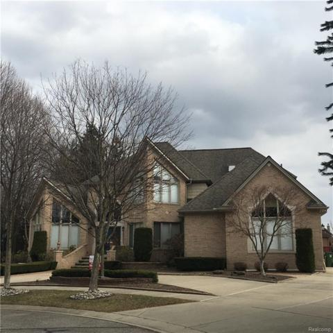 12748 Towering Oaks Drive, Shelby Twp, MI 48315 (#217090977) :: RE/MAX Classic