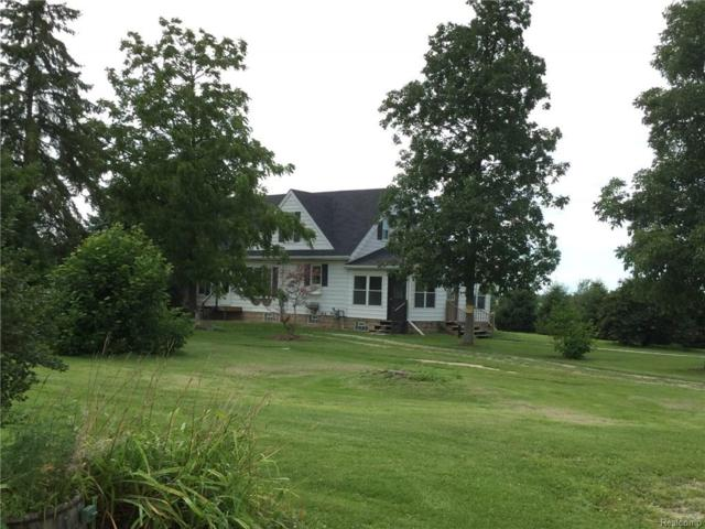 6397 N Branch Road, Burnside Twp, MI 48461 (#218001176) :: RE/MAX Classic