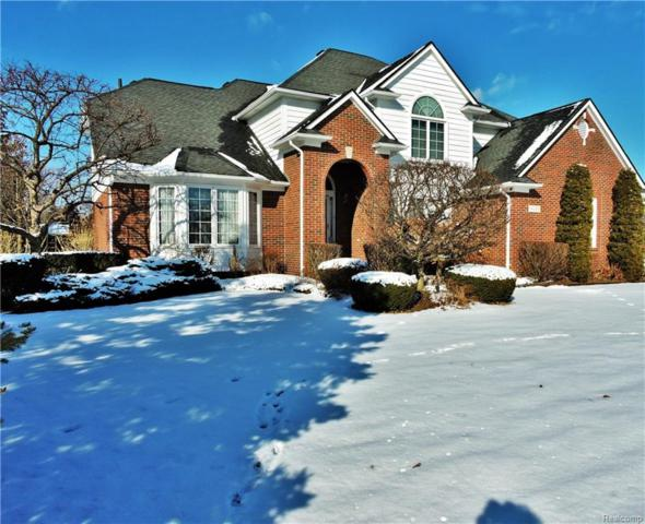 14289 Patterson Drive, Shelby Twp, MI 48315 (MLS #218003947) :: The Toth Team
