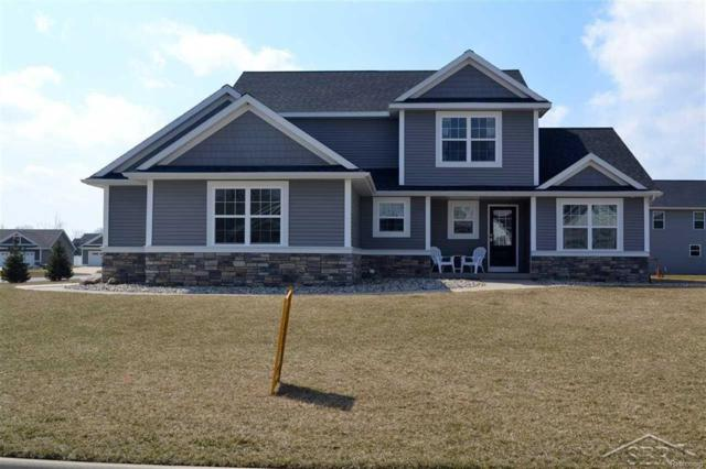 8585 Ashland Place, Tittabawassee Twp, MI 48623 (MLS #61031338309) :: The Toth Team