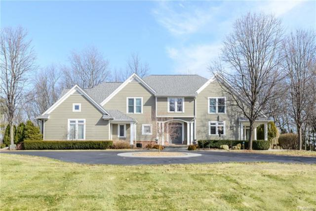 9440 Thornhill Drive, Independence Twp, MI 48348 (#218010669) :: The Buckley Jolley Real Estate Team